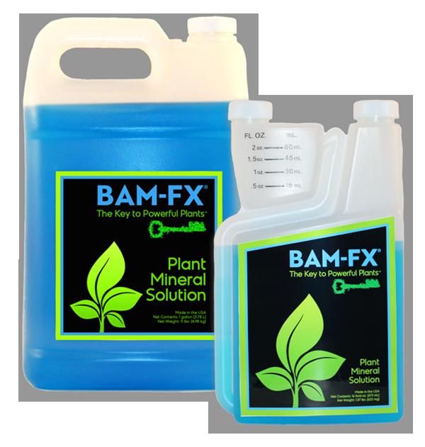 BAM-FX Technology, BAM-FX, BAM-FX Products
